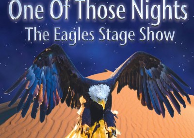 One of those nights – The Eagles show
